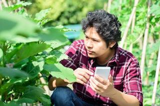 Inbound Marketing in Agriculture Sector.jpg