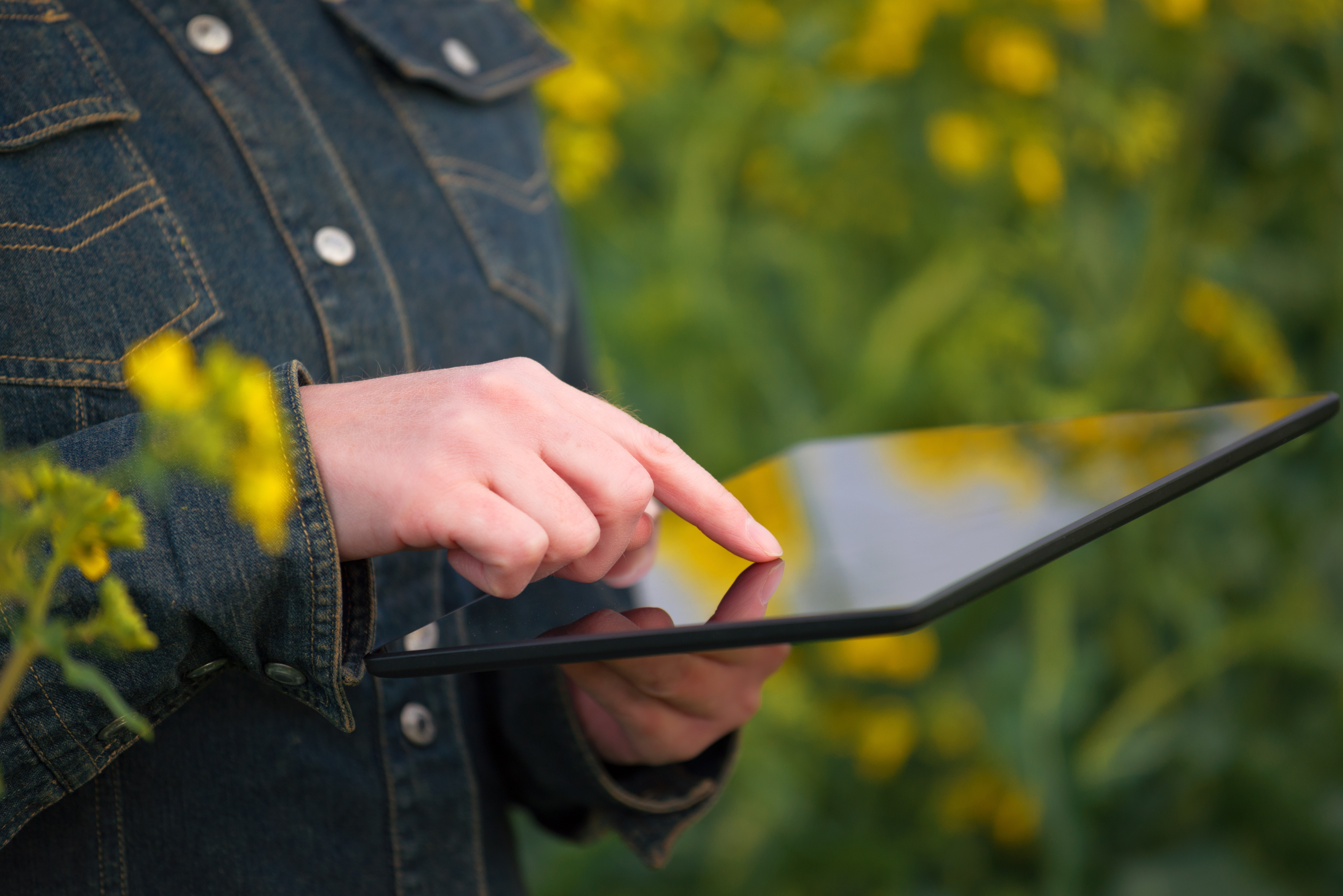 agriculture-marketing-farmer-logging-crop-data-in-field-with-ipad-tablet