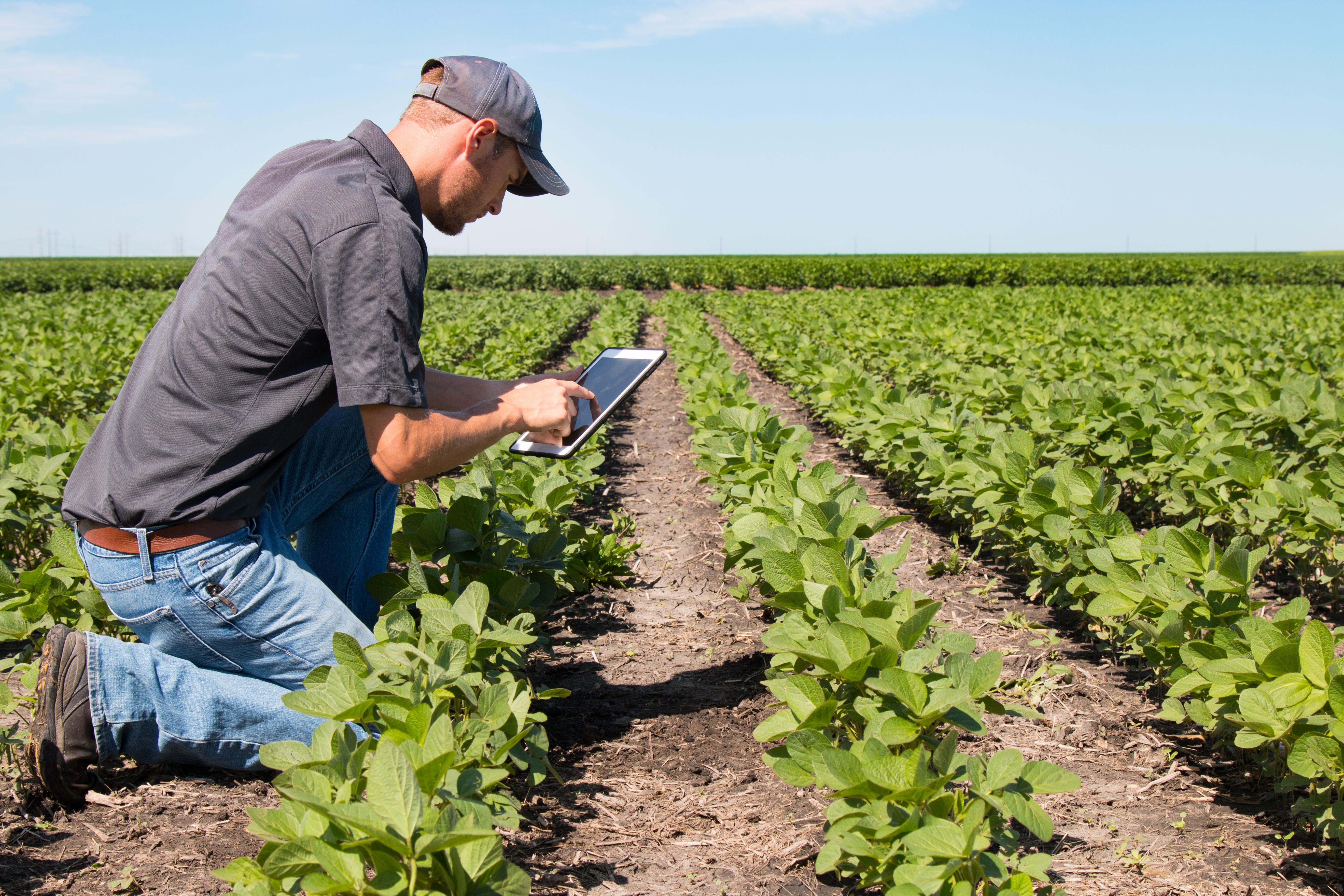 crop-survellance-andag-tech-agricultural-marketing